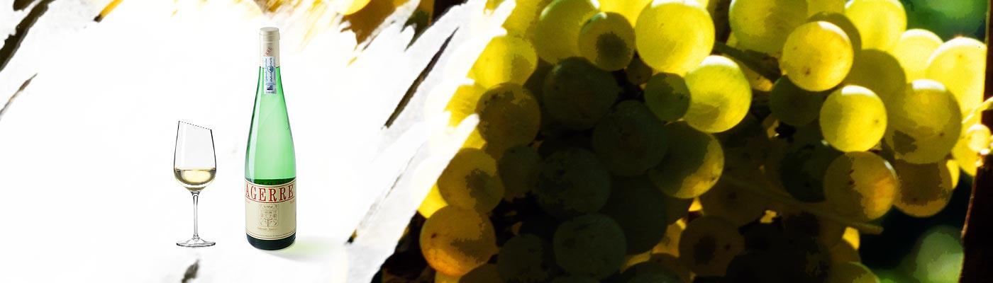 Un vino blanco ideal para pescados y aperitivos