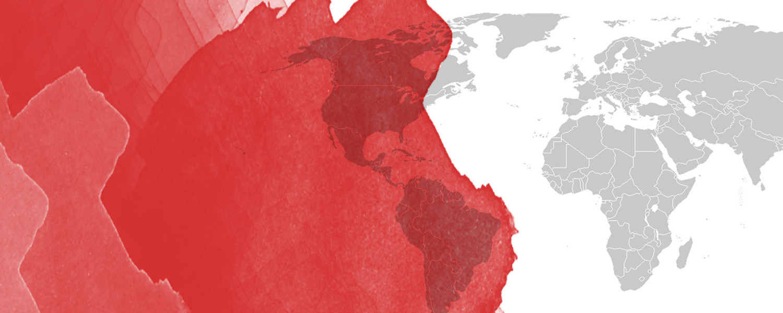 Venta y distribución nacional e internacional