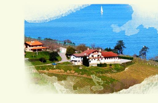 Txakoli, the Basque white wine